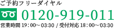 0120-919-011